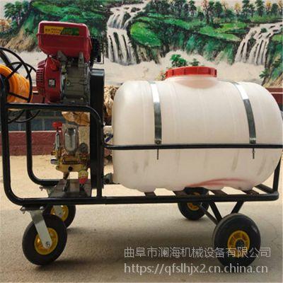 新型大棚打药机 加厚药桶打药喷雾器 农用植保喷雾器规格齐全