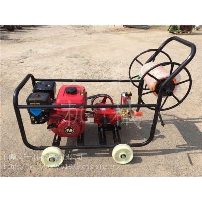 达州高压杀虫打药机 脉冲式汽油喷雾器 农用打药机价格