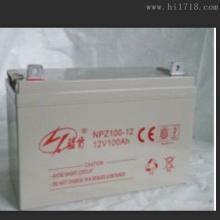蓝肯蓄电池型号NP12-200厂家价格