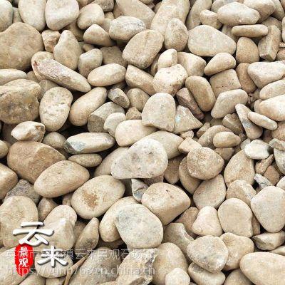 供应各类规格鹅卵石,天然鹅卵石