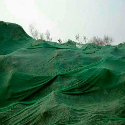 土地覆盖网 覆盖土堆网 绿化环保网