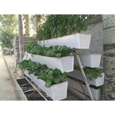 草莓立体栽培槽提高产量,节水省肥