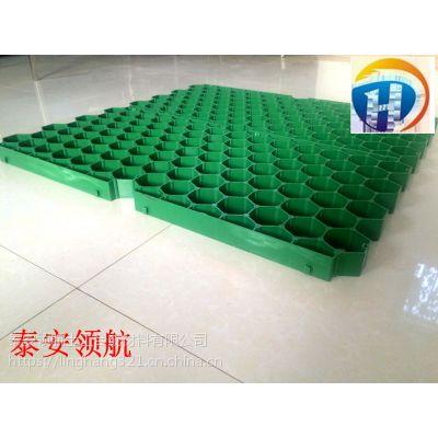 杭州人行道植草格-HDPE植草格厂家价格简介