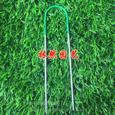 金属地膜钉 假草坪固定钉 足球场固定钉紧固钉户外铁钉园艺地布钉