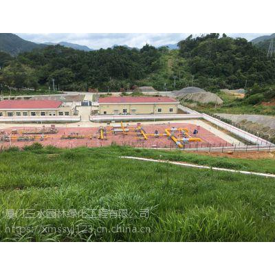 出售自贡优质护坡绿化效果好的灌木种子品种