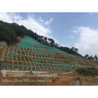 边坡防护施工专用绿化防护网资材寻甸县专卖