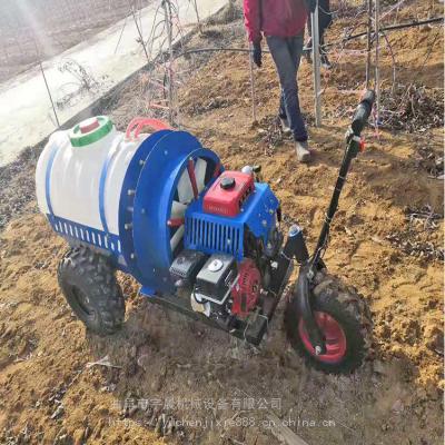 农用消毒喷雾器 打药机厂家 蔬菜园喷雾器雾化均匀喷雾器