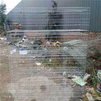 3层12位鸽子笼子现货批发 加粗镀锌钢丝 结实耐用 鸽子笼厂家批发