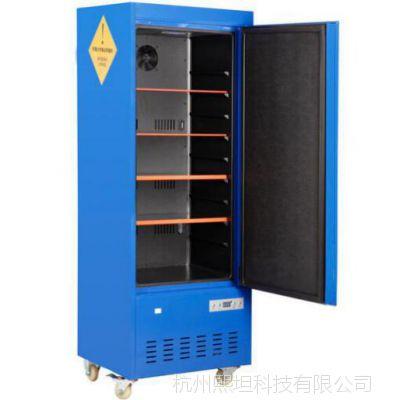 有害药品储藏柜|危险品存放柜|恒温药品柜|毒麻柜|XT-LBS070A