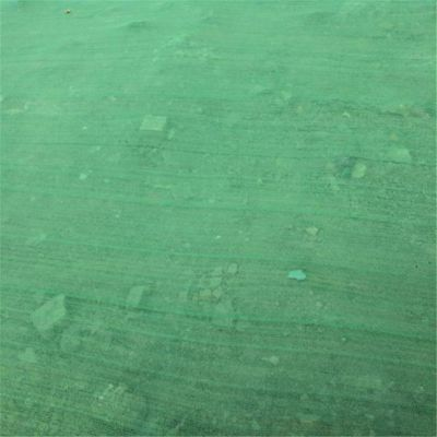 聚乙烯覆盖网 盖土网现货 盖工地网厂家