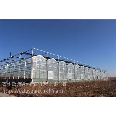 江苏盐城农业扶贫玻璃大棚温室园区3万平方、6米16中空墙高质量建设厂家