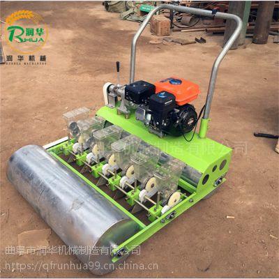 定制下种量的播种机 小型生菜精播机 安庆菜心播种机