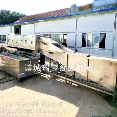 瑞宝XJ-6000型大姜清洗机 老姜清洗机
