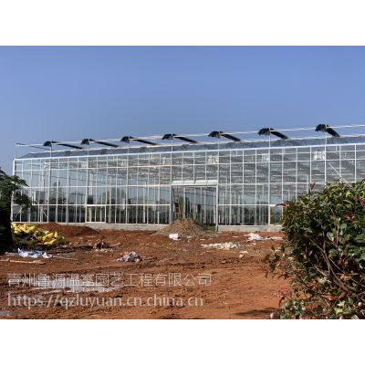 江苏徐州智能草莓采摘玻璃大棚温室4米高、2万平方3.0mm内立柱型承建企业