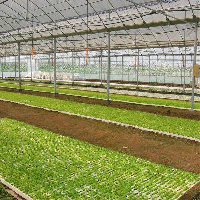 供应临沂养殖玻璃温室大棚 鱼虾与蔬菜共生温室大棚厂家