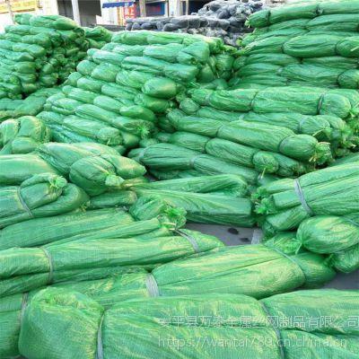 绿色防尘网价格 草绿色盖土网 塑料网价格多少