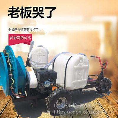普航四轮手推式喷雾器 绿化园林打药机价格 优质果树防虫打药机厂家