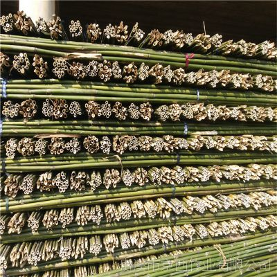 厂家直销4米2-3公分粗竹竿 2019年山地苹果项目用 京西竹业荣誉出品