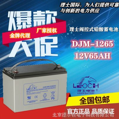 理士DJM1265 12V65AH UPS/EPS直流屏 机房服务器专用免维护蓄电池