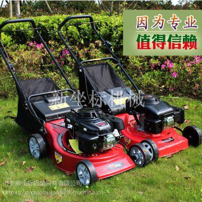 振鹏庭院专用除草机 常规自走草坪设备 公园草地绿化带专用 5.5HP