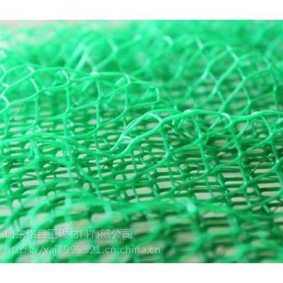 山东铭鑫厂家直供固土植草专用材料之三维植被网,质优价廉