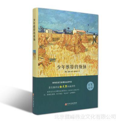 少年维特的烦恼 全译本原著世界文学名著正版批发少儿童图书籍