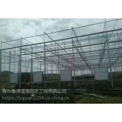 全钢化浮法玻璃覆盖整体专业设计施工建设型温室大棚厂家
