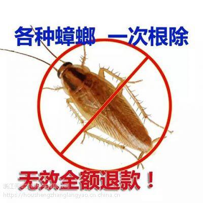 厂家蟑螂药直销专供POC公司专业灭杀大小蟑螂见效快药效持久性好
