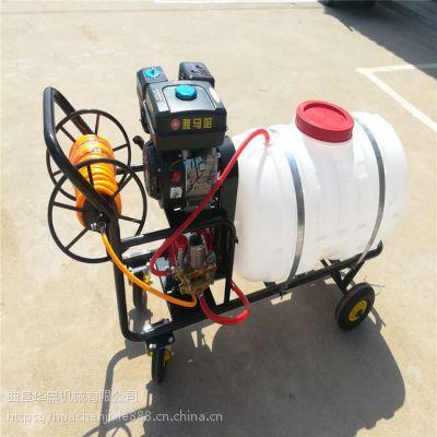 手推式打药机/果树花圃杀虫喷雾器/养殖场清洗消毒机