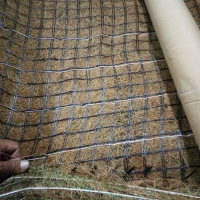 植草毯河道绿化 边坡水土流失治理生态毯 椰丝毯 绿维椰丝毯