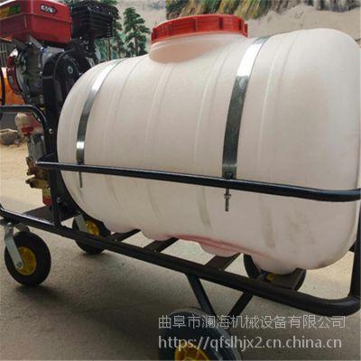园林手推式打药机 生产汽油喷药机 手推式动力喷雾器