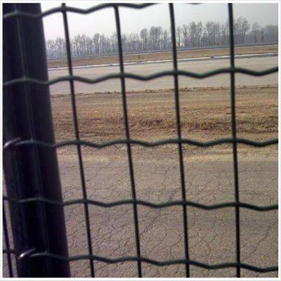 养殖围网 山地散养鸡围网 供应荷兰网