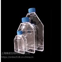 LabServ 细胞培养瓶
