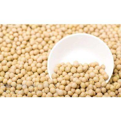高蛋白大豆哪家好,找宏源粮贸