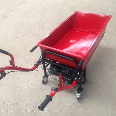 平板加斗两用独轮车 工地小道拉沙小推车 奔力DL-1