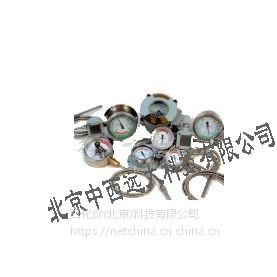 中西DYP 温度表/防爆测温仪表 型号:NA51-WTZd-288库号:M10167
