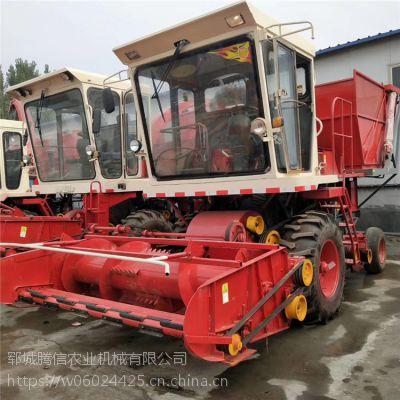 大型自走地滚刀式玉米秸秆青储机 牧草粉碎回收机 青贮饲料机
