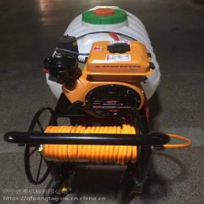 庞泰喷雾器可换60注加多少钱 茶园喷药泵