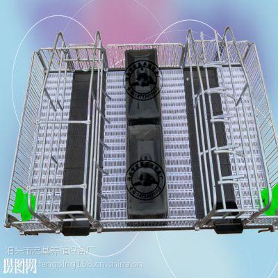 新型养殖污水处理复合母猪产床厂家产保一体床尺寸定做