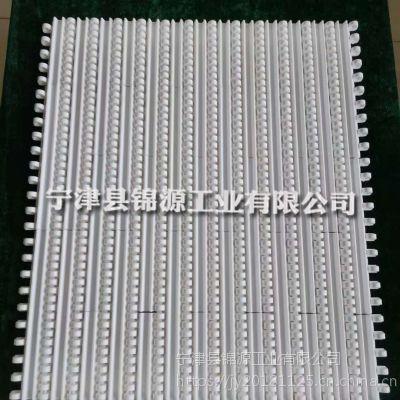 热销PP网带输送机塑料网带链板食品级平板网带