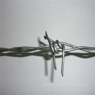 镀锌刺绳网 铁线刺网价格 2.7MM刺绳网
