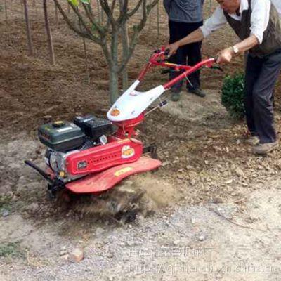 供应170柴油水冷旋耕机/动力强果园松土机/圣鲁除草机