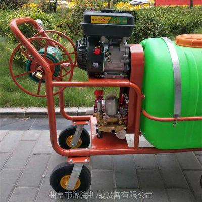 澜海 果树杀虫打药喷雾器 玉米喷药机 喷洒机 喷雾机 高压打药机厂家直营