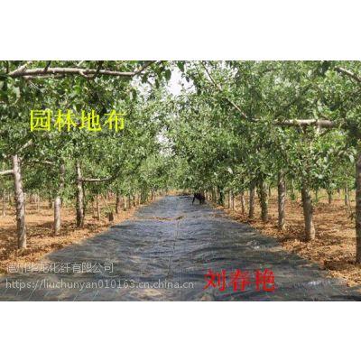 供应陕西1.2米宽猕猴桃果园专用防草地布优质厂家选择山东建通