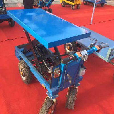 仓库载货发货运输车卡博恩供应可升降物流带扶手平板车