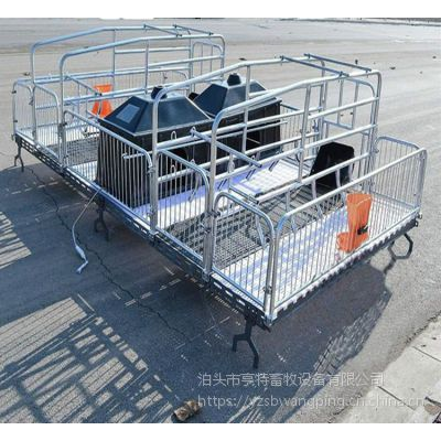 养猪设备带防压杠母猪产床双体价格合理