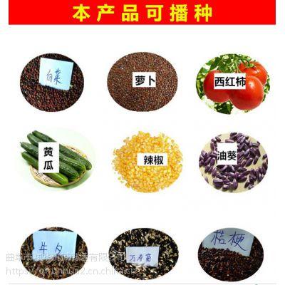 新品蔬菜花卉精量播种机 白菜油菜菜心精播机 多选择汽油蔬菜种植机