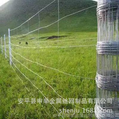 自然灾害防护网、铁丝网养鸡专用、养殖网散养