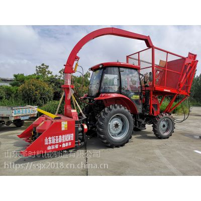 青储机生产厂家 大型全株收割机 背负式玉米收割机