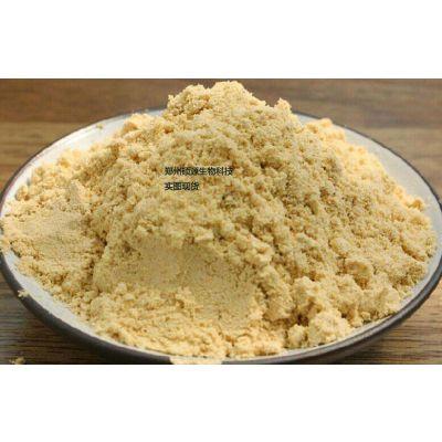 郑州硕源直销食品级生姜粉的价格 哪里卖生姜粉生产厂家